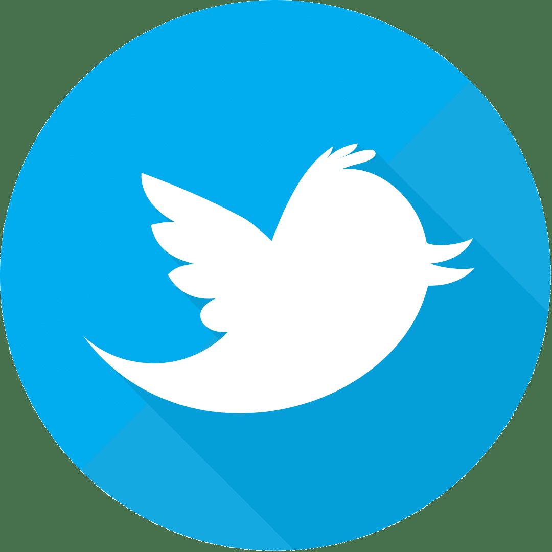 logos_training_twitter